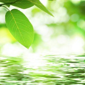 体臭について   神奈川 水素サロン